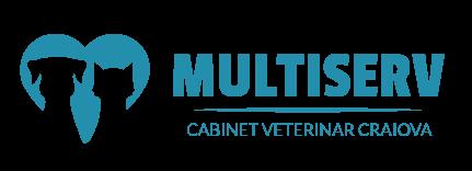 Multiserv